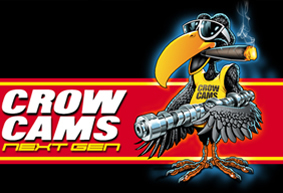 CrowCams